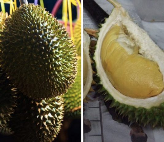 Durian meyvesi kokusu
