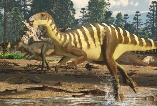 yeni dinozor türü