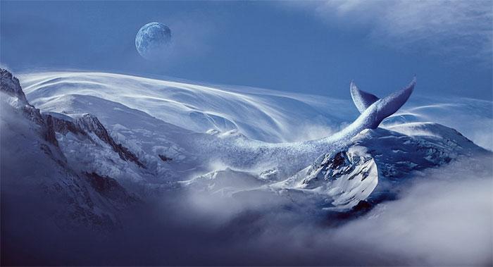 mavi-balina